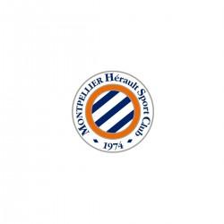 Magnet Logo MHSC