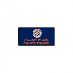Magnet Pailladinho MHSC
